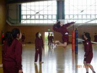 バレーボール女子 (3)